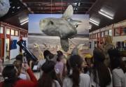 Crianças celebram a chegada do Peixe-lua no na Unesc