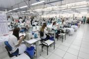 """Setor têxtil apoia o movimento """"Compre de SC"""""""