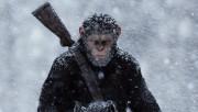 Novo Planeta dos Macacos estreia no Farol Shopping