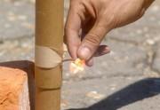 Vereador quer proibir uso de fogos com efeitos sonoros