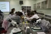 Crianças do Colégio Unesc aprendem a se proteger da Dengue