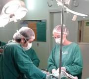 Duas captações de múltiplos órgãos aconteceram no HSJosé