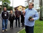 Mais quaresmeiras para florir Siderópolis no Dia do Meio Ambiente