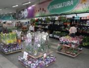 Bistek espera incremento de 45% na venda de flores no Dia das Mães