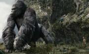 Cinema do Farol Shopping conta com a estreia de Kong