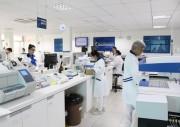 Auditoria aprova certificação ISO 9001 ao Laboratório Búrigo