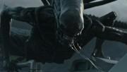 Alien: Covenant volta às telas do cinema no Farol Shopping
