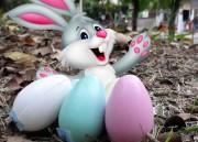 Páscoa Encantada: caça aos ovos terá mais de 80 brindes no sábado