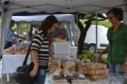 Empreendedorismo e comércio sustentável na Unesc