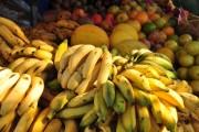 Valor Bruto da Produção Agropecuária deve superar R$ 28 bilhões