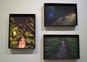 Artistas de todo o Brasil expõem obras sobre Feminismo na Unesc
