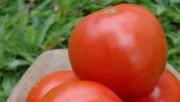 Preço médio dos alimentos teve queda de 0,62% em outubro