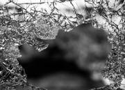 Reabilitação psicológica de vítimas de violência é tema de aula