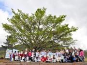 Cooperativas promovem Dia de Cooperar em Jacinto Machado