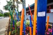 Aluna protesta contra o descaso com a natureza em intervenção artística