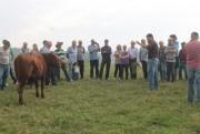 Cocal realiza dia de campo de gado de corte com foco na qualidade da carne
