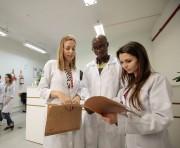 Udesc oferece quase 400 vagas de graduação a candidatos do Enem