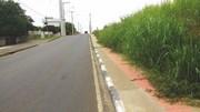 Vegetação invade calçada da Avenida Diomício Freitas