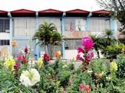 Previdência dos serviços municipais de Içara terá mudanças