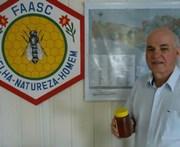 Segundo pesquisa, Içara produz 4,5% do mel catarinense