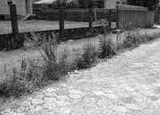 Ruas pavimentadas de Içara estão sendo abandonas