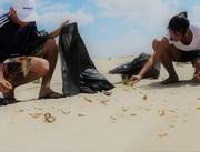 Tonéis de coleta seletiva auxiliarão mutirão Praia Limpa