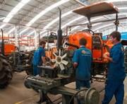 Empresas da região modificam rotina com ano novo na China
