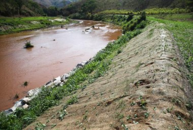 Agricultores retomam cultivo em Mariana, mesmo com rejeitos da Samarco