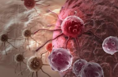 Terapia vencedora de Nobel da Medicina é aplicada em Criciúma