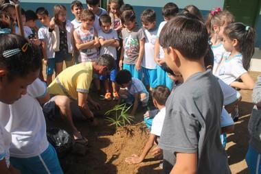 Atividades são realizadas pelo Dia da Árvore