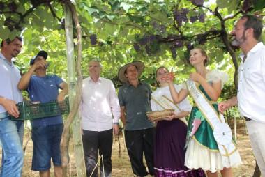 Aberta oficialmente a 10ª Vindima Goethe