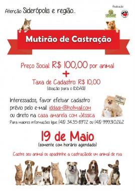 Ultima semana para cadastros no mutirão de castração para cães e gatos