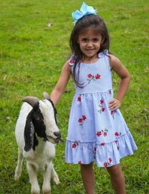 Aluna do primeiro ano auxiliou no nascimento de cabrito em Içara