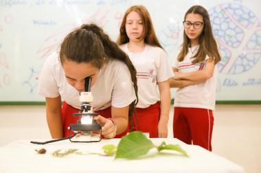 """Professor pesquisador em cena com o novo sistema de ensino """"Aprende Brasil"""""""