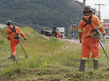 BR-10 tem trabalhos de roçada em travessia urbana de Capivari de Baixo