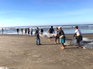Rinconenses capturam mais de 12 toneladas de tainha