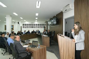 Conselho Municipal dos Direitos das Pessoas com Deficiência de Içara é aprovado