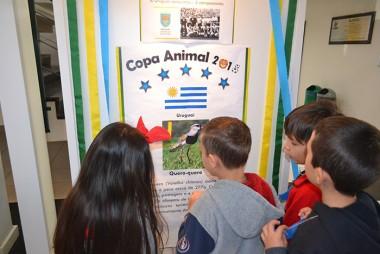Museu de Zoologia da Unesc promove a Copa Animal