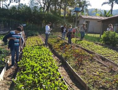 Primeira edição do Dia de Campo na Fazenda Experimental