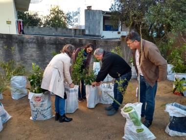 Içarenses recebem mudas frutíferas para campanha