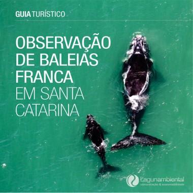 Site lança 2ª edição do Guia Turístico de Observação de Baleias Franca