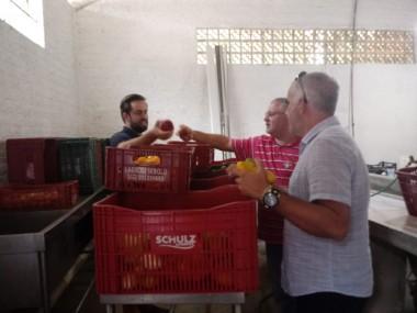 Banco de Alimentos é alternativa contra o desperdício