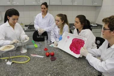 Alunos do Técnico em Química desenvolvem plástico comestível