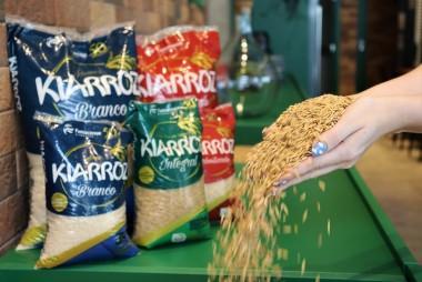 Início da colheita de arroz traz boas expectativas para a comercialização do grão