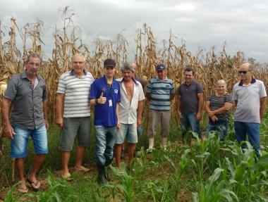 Custos da produção de milho e fertilidade do solo debatidos em Maracajá