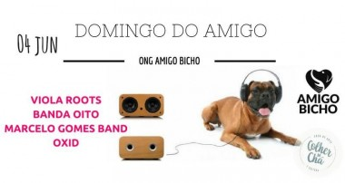 Ong Amigo Bicho promove Domingo do Amigo