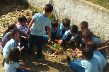 Crianças do CEI Sonho Infantil comemoram Dia da Árvore
