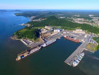 Porto de São Francisco do Sul tem aumento de 41,92% no faturamento em 2020