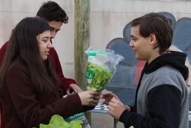 Alfaces são comercializadas em projeto de escola em Içara