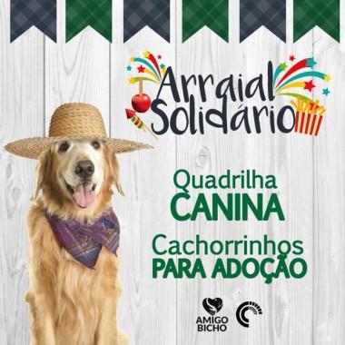 Arraial Solidário terá quadrilha canina no fim de semana